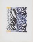 """Gérard Titus-Carmel Forêts (album constitué d'un ensemble de 6 gravures) Atelier Piero Crommelynck, 1996 Techniques mixtes, signée, datée et numérotée """"12/45"""" 39 x 49,5 cm"""