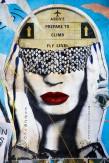 Composition photographique : Jérôme Revon Street-Artist : Dee Dee FLY ME, 2014 Brooklyn, Tirage unique sur papier métallique contrecollé sous diasec, 135 x 90 cm